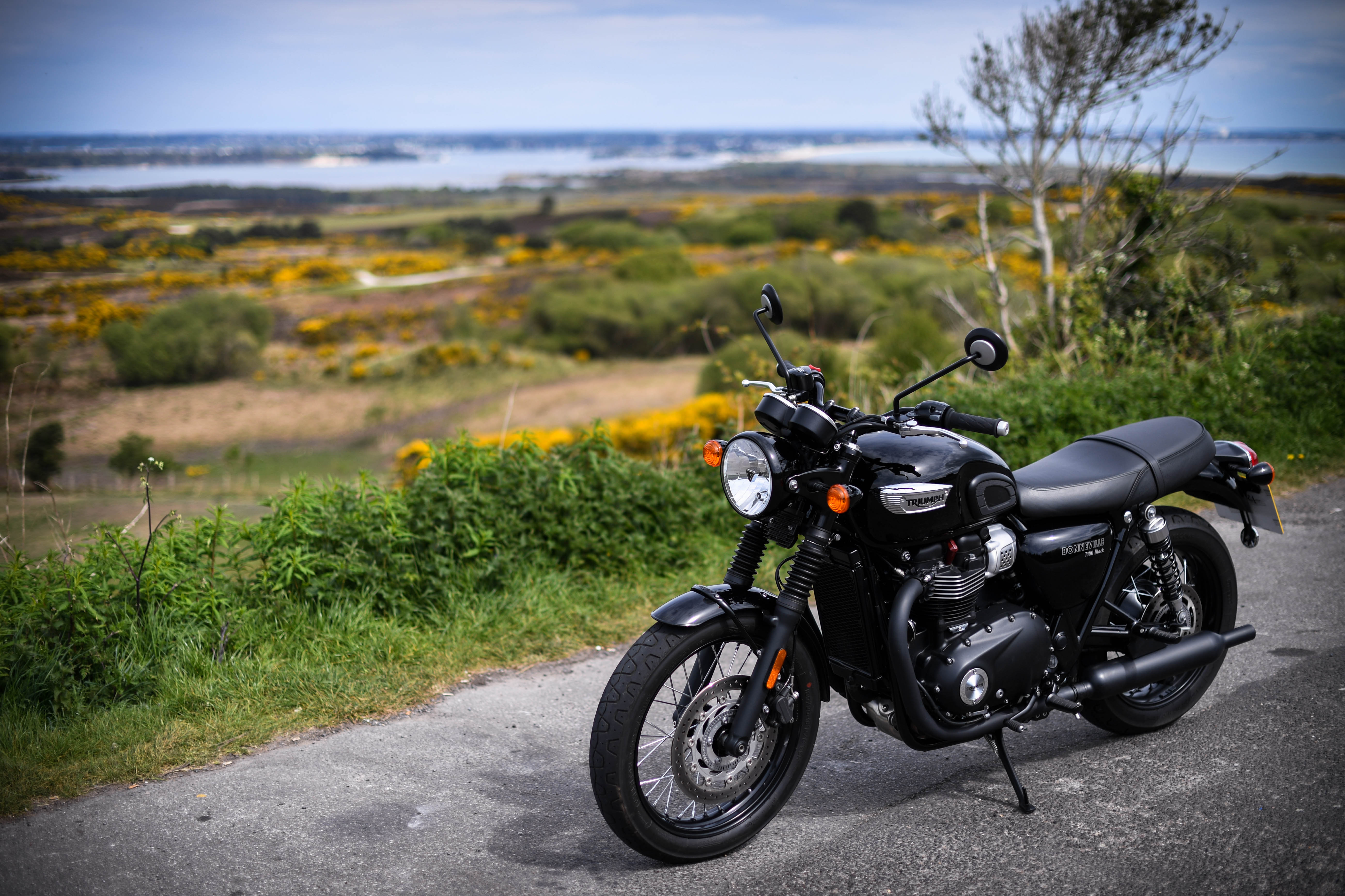 Triumph Bonneville T100 Black Flat-Out