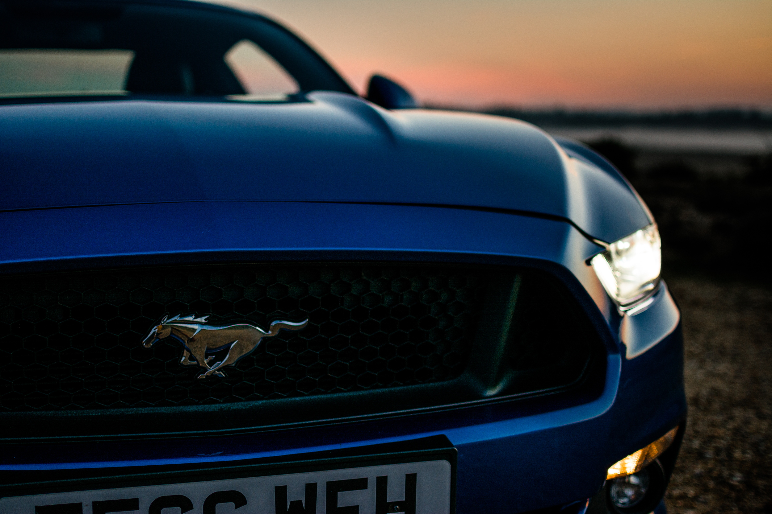 Ford Mustang front detail