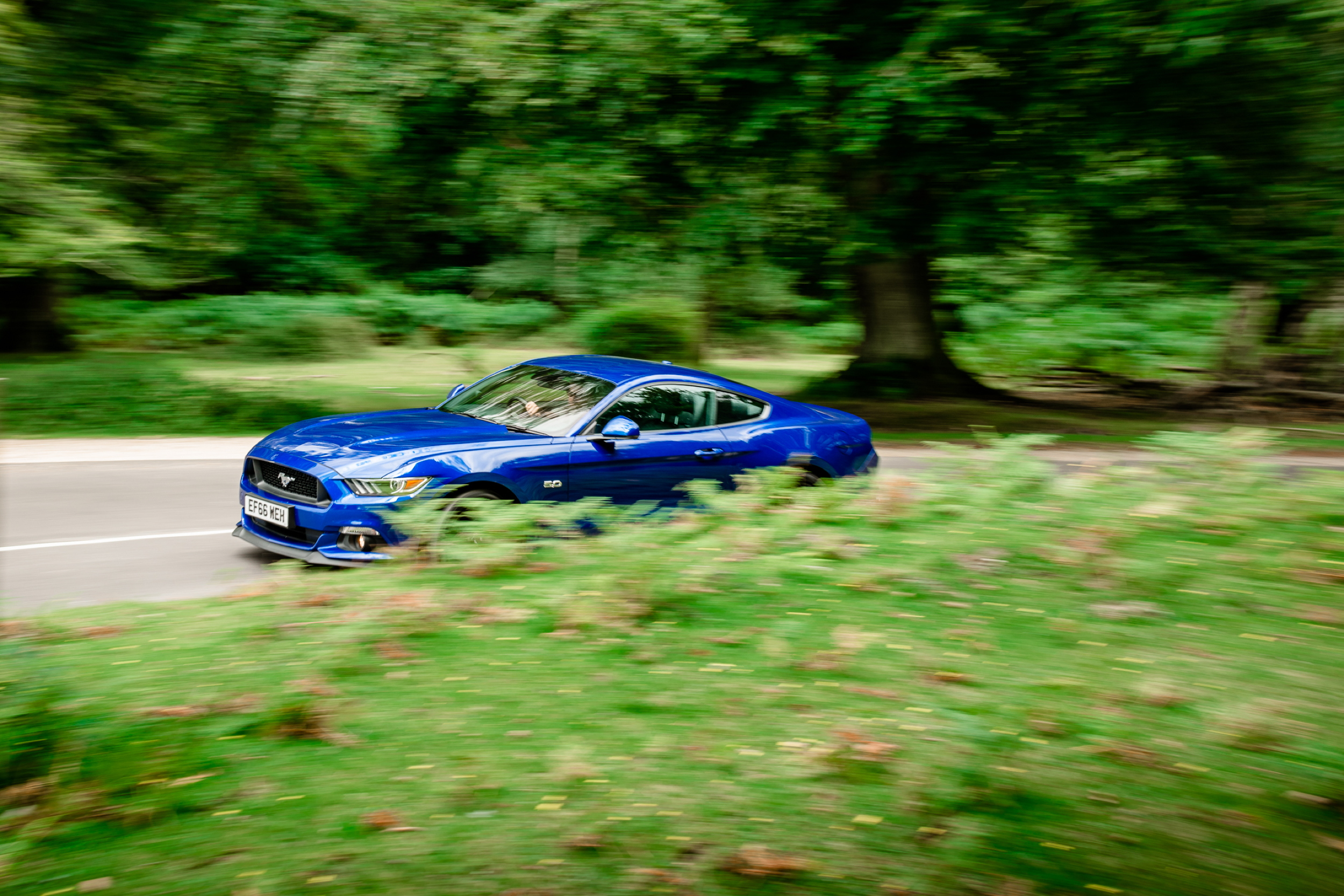 Ford Mustang 2017 panning
