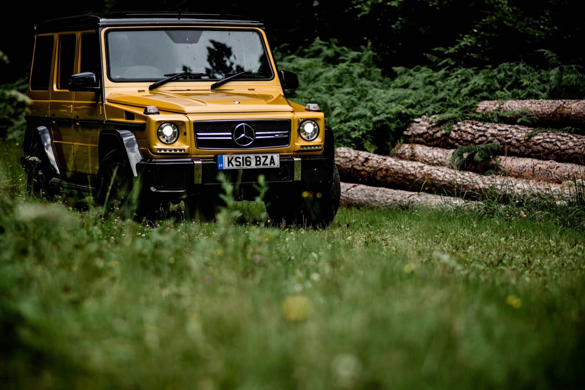 Mercedes-AMG G 63 forest