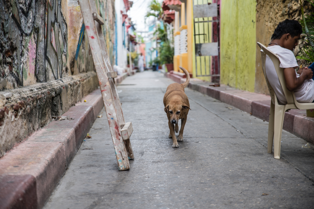 Pan America Mini - Part 1 Cartagena-5