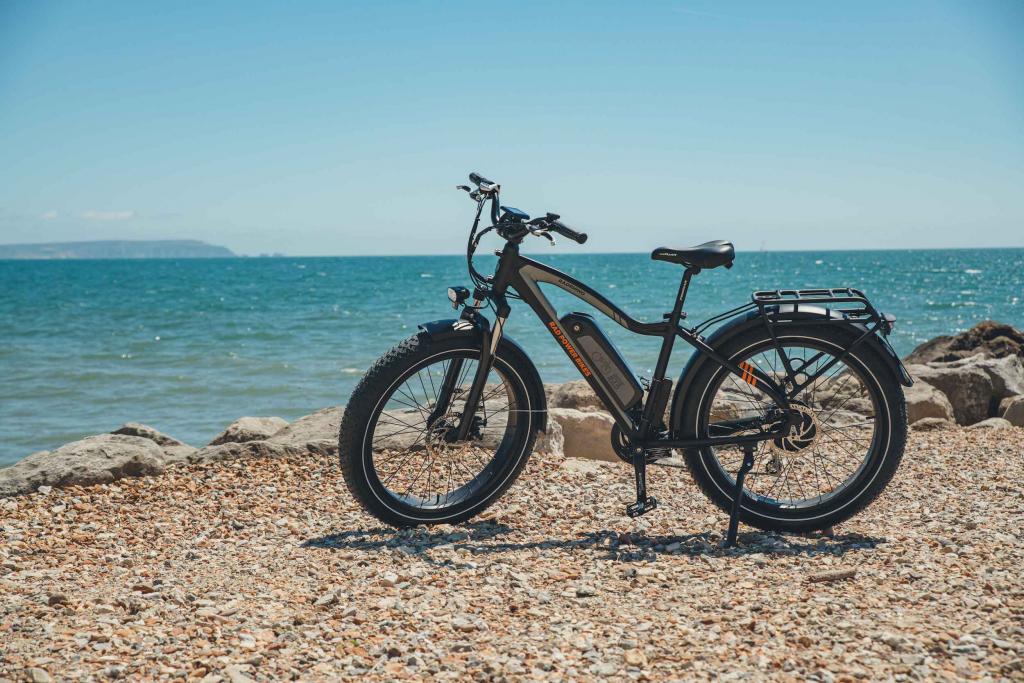 Rad Power Bike RadRhino