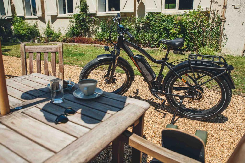 RadRhino Rad Power Bikes